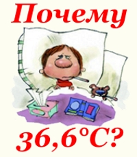 Почему 36,6 считается нормальной температурой тела человека